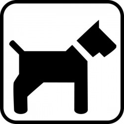 Hund tilladt