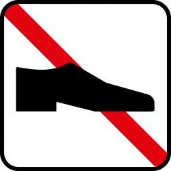Ingen fodtøj