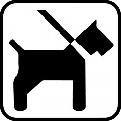 Hund i snor